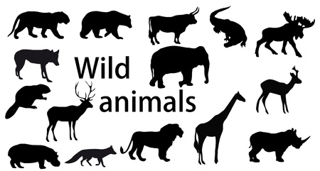 vector set: wild animals Vector