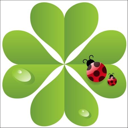 vector clover  leaf with ladybird. Stock Vector - 11368206