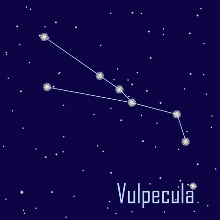 vulpecula: The constellation  Vulpecula star in the night sky. Vector illustration