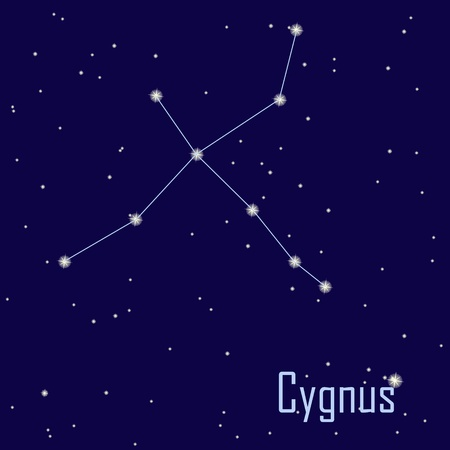 astrophotography: The constellation  Cygnus star in the night sky. Vector illustration