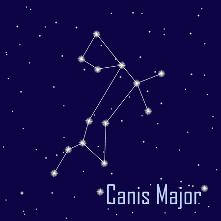 major: The constellation  Canis Major star in the night sky. Vector illustration