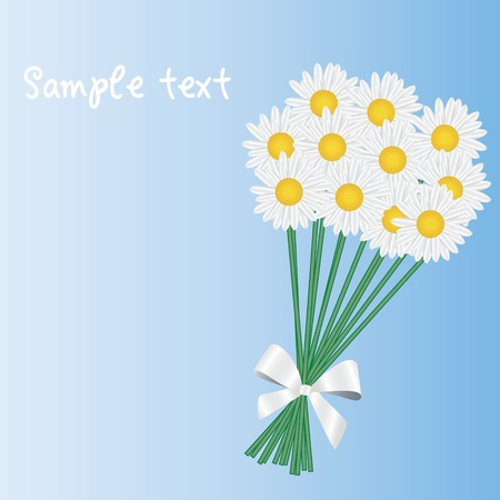 posy: a posy of daisies tied with a white ribbon illustration