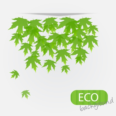 eco leves background. vector illustration Stock Vector - 11718862