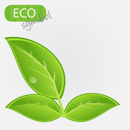 Environmental icon with plant. Vector illustration Stock Vector - 11718842