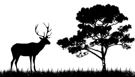 incendio bosco: silhouette di cervo e l'albero Vettoriali