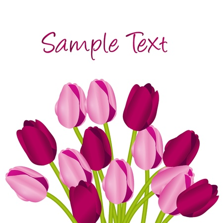 Floral background with tulips Stock Vector - 11845006