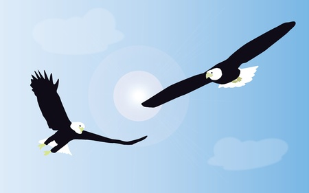 Two white tailed eagles are fighting in mid air against a background of blue sky. Vector.