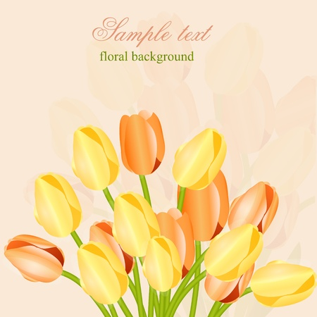 fragility: Floral background with tulips Illustration
