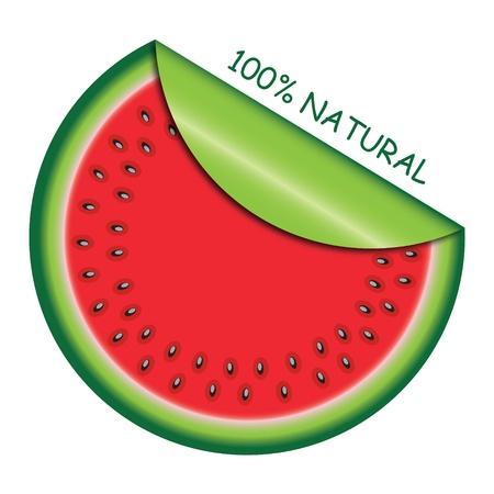Icoon watermeloen slice met met opgerolde hoek. Vector illustratie. Vector Illustratie