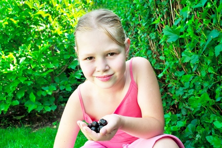 Young girl is picking black currant. Stock Photo - 12833368