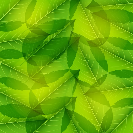 canabis: Seamless pattern with green leaves. Illustration.