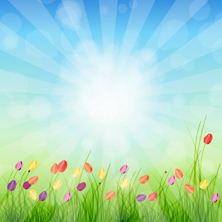 lit image: Summer Abstract Background with grass and tulips against sunny sky illustration
