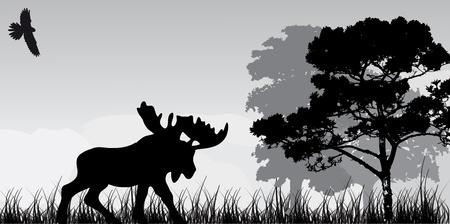 bosbrand: silhouet van elanden en boom