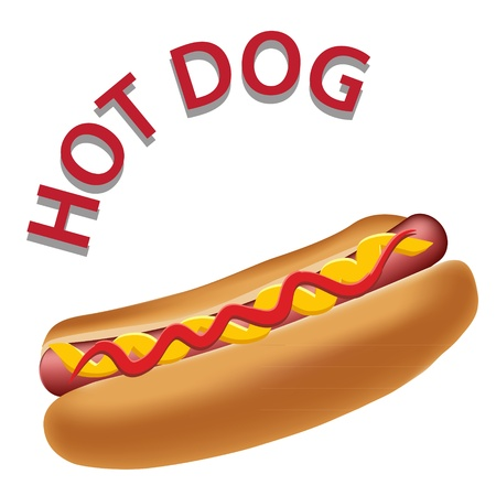 wiener: Realistic hot dog vector illustration