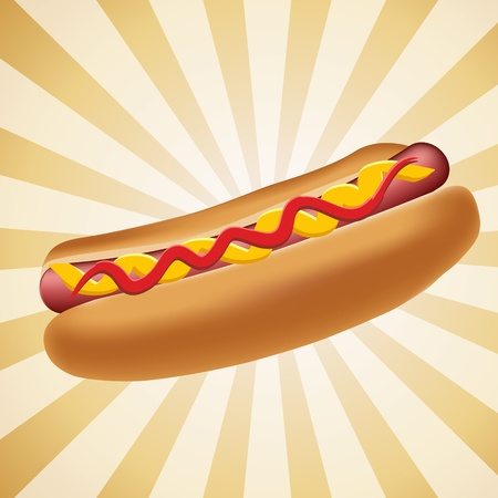 hot dog: Realistic hot dog vector illustration