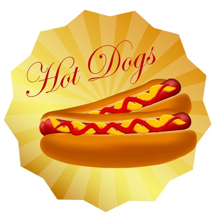 Realistic hot dog vector illustration Vector