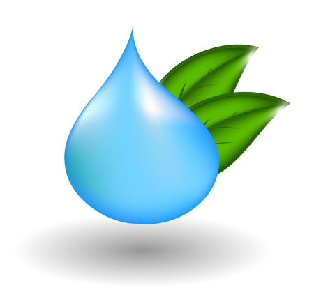 wet leaf: water drop with green leaves.illustration Illustration