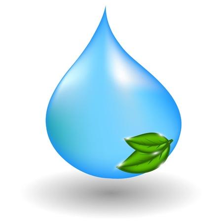 fresh water splash: Wassertropfen mit gr�nen Bl�ttern. Abbildung