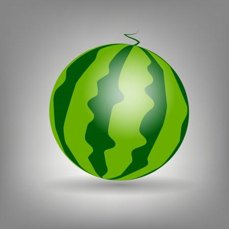 watermelon icon vecotr illustration Stock Vector - 13968349