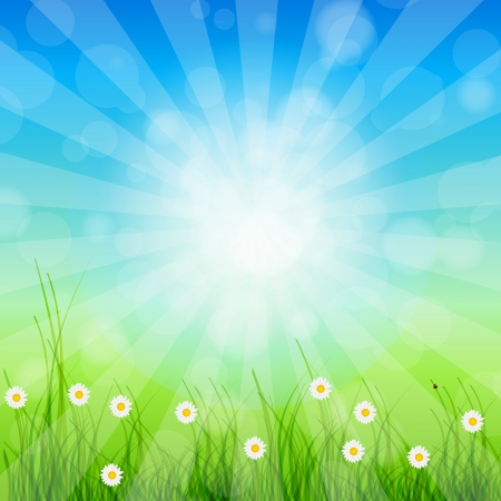 Summer Abstract Background with grass and chamomile against sunny sky. Vector illustration. Stock Vector - 14310047