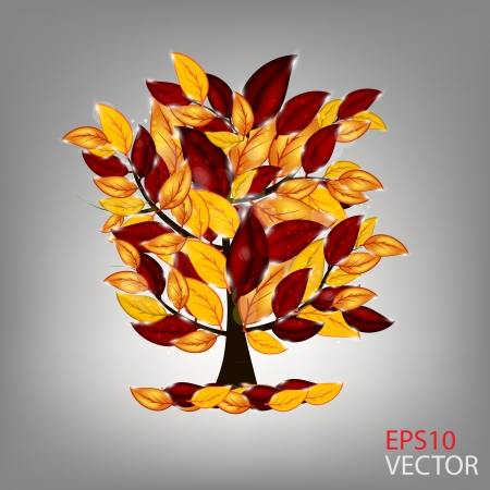 autumn tree with colorful leaves  illustration  Vector