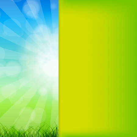 Summer Abstract Background with grass and chamomile against sunn Stock Vector - 15654591