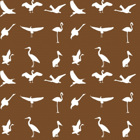 Set of different photographs of birds seamless pattern   Stock Vector - 16140485