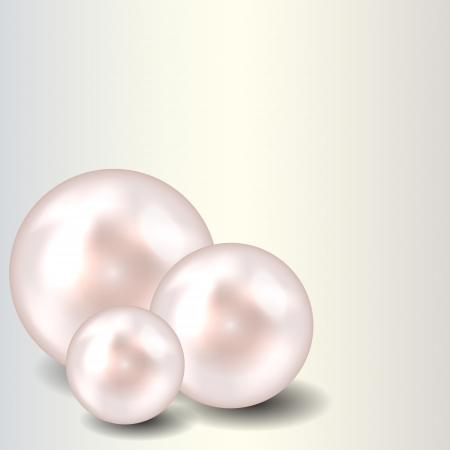Beauty pearl Hintergrund Vektor-Illustration