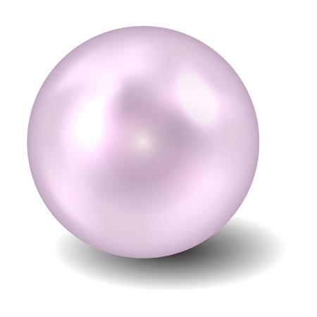 perlas: Perla ilustraci�n vectorial