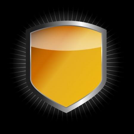 blue shield: Protect  shield  illustration