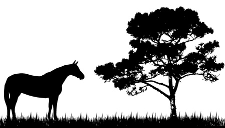 spring training: silhouette of  horse and tree Illustration