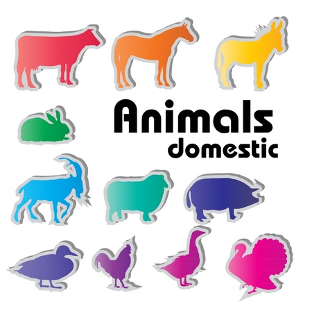 vector domestic animals silhouettes Stock Photo - 17337186
