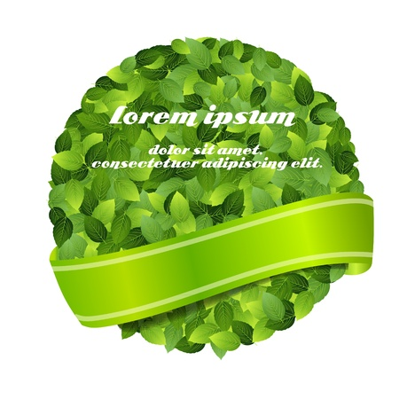 Green eco friendly label from green leaves  Vector illustration Stock Vector - 17418259