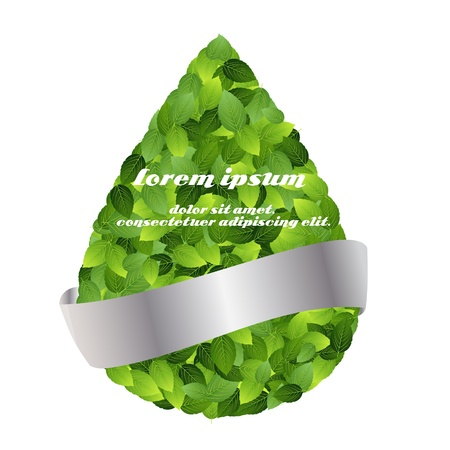Green eco friendly label from green leaves  Vector illustration Stock Vector - 17539431