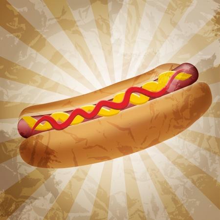 wiener dog: Realistic hot dog  Stock Photo