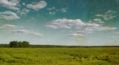 grunge nature background with field and sky Stock Photo - 18024440