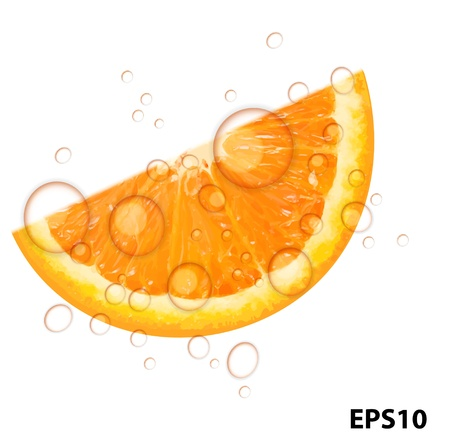 Fresh juicy orange background vector illustration Vector