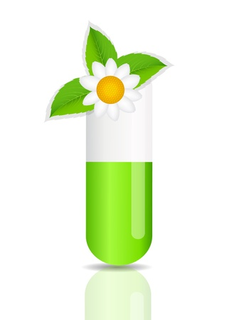 Herbal pill icon Environment background vector illustration Vector
