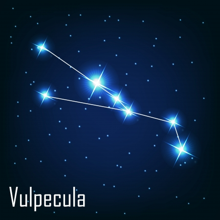 starbright: The constellation  Vulpecula star in the night sky. Vector illustration