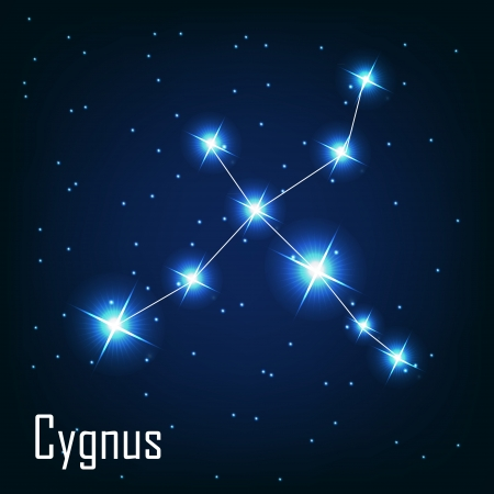 starbright: The constellation  Cygnus star in the night sky. Vector illustration