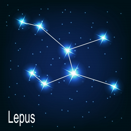 starbright: The constellation Lepus star in the night sky. Vector illustration Illustration