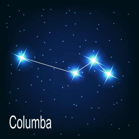 starbright: The constellation Columba star in the night sky. Vector illustration Illustration