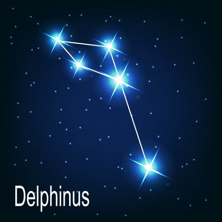 starbright: The constellation Delphinus star in the night sky. Vector illustration Illustration
