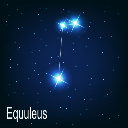 starbright: The constellation  Equuleus star in the night sky. Vector illustration Illustration