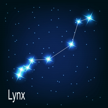 The constellation Lynx star in the night sky. Vector illustration Vector