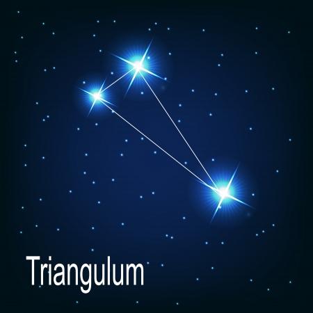 """milkyway: Het sterrenbeeld """"Triangulum"""" ster aan de nachtelijke hemel. Vector illustratie"""