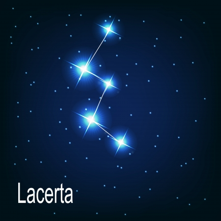 The constellation Lacerta star in the night sky. Vector illustration