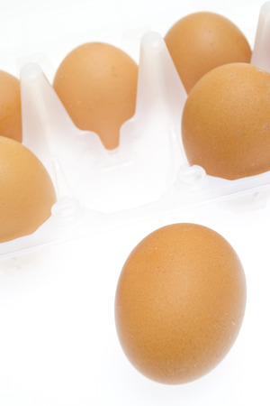 Chicken brown egg closeup view background photo