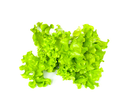 vibrat color: Lettuce Isolated on White Background