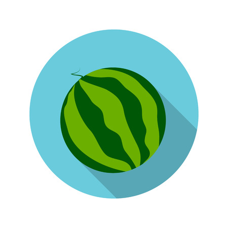 sha: Flat Design Concept Watermelon Vector Illustration With Long Sha Illustration